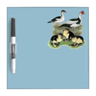 Ducks Black Pied Muscovy Family Dry Erase Board