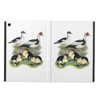 Ducks Black Pied Muscovy Family Cover For iPad Air
