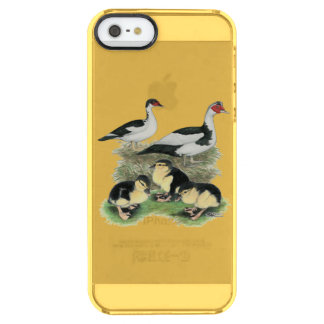 Ducks Black Pied Muscovy Family Uncommon Clearly™ Deflector iPhone 5 Case