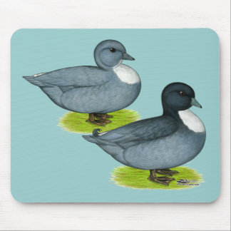 Ducks:  Blue Calls Mouse Pad