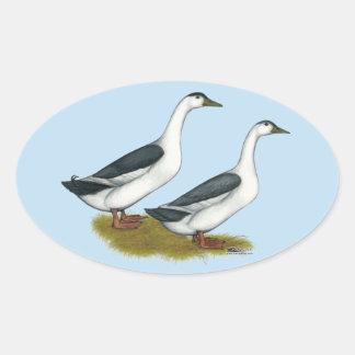 Ducks:  Blue Magpies Oval Sticker