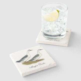 Ducks:  Blue Magpies Stone Coaster
