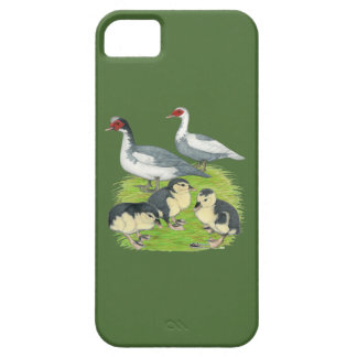 Ducks Blue Pied Muscovy Family iPhone 5 Cover