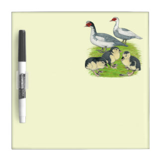 Ducks Blue Pied Muscovy Family Dry-Erase Board