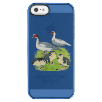 Ducks Blue Pied Muscovy Family Uncommon Clearly™ Deflector iPhone 5 Case