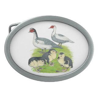 Ducks Blue Pied Muscovy Family Oval Belt Buckle