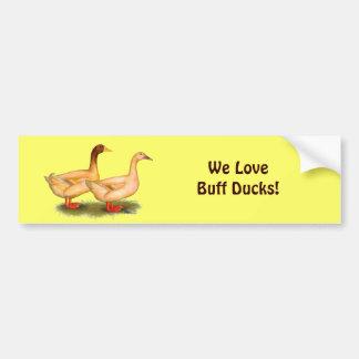 Ducks:  Buff Orpington Bumper Sticker