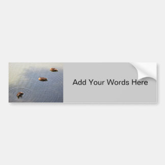 Ducks Bumper Sticker