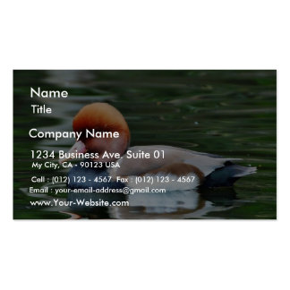 Ducks Business Card