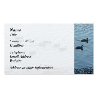 Ducks. Business Card