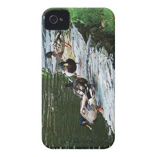 Ducks By a Pond Blackberry Bold Case