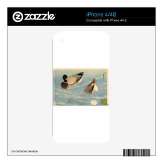 Ducks by Goyo Hashiguchi iPhone 4 Skins