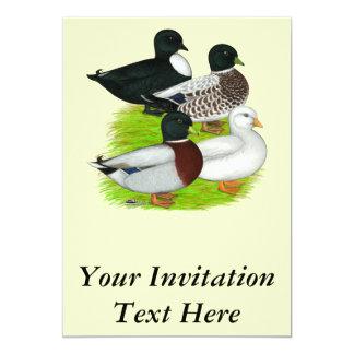 Ducks:  Call Quartet Card