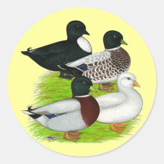 Ducks Call Quartet Stickers