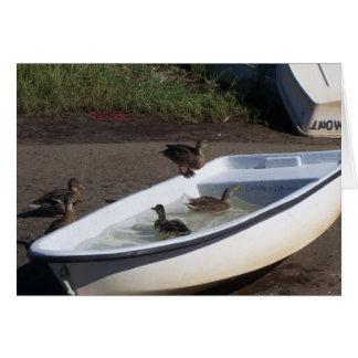 Ducks Card