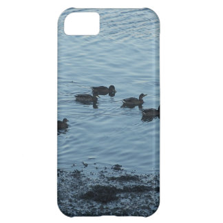Ducks Cover For iPhone 5C
