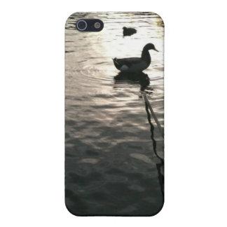 Ducks Case For iPhone SE/5/5s