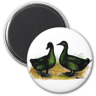 Ducks:  Cayuga Pair 2 Inch Round Magnet
