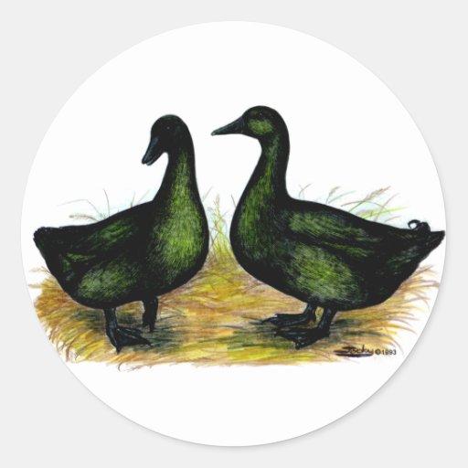 Ducks:  Cayuga Pair Classic Round Sticker