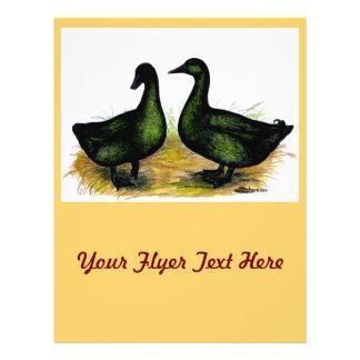 Ducks:  Cayuga Pair Flyer