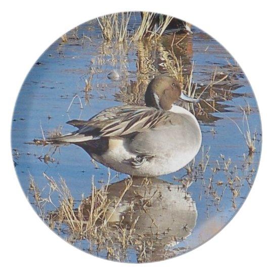 Ducks Ducklings Birds Wildlife Animals Dinner Plate