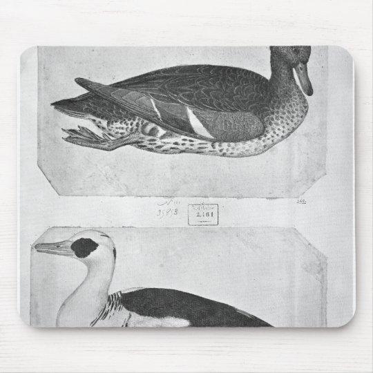 Ducks, from the The Vallardi Album Mouse Pad