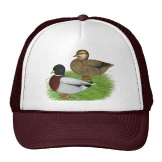 Ducks:  Gray Calls Trucker Hat