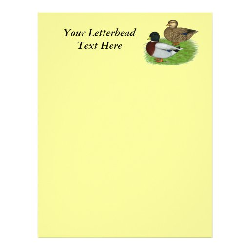Ducks:  Gray Calls Letterhead