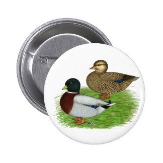 Ducks:  Gray Calls Pinback Button