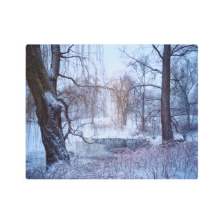 Ducks In A Frozen Pond In New York's Central Park Metal Photo Print