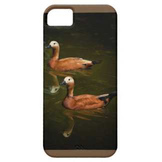 Ducks in a row iPhone SE/5/5s case