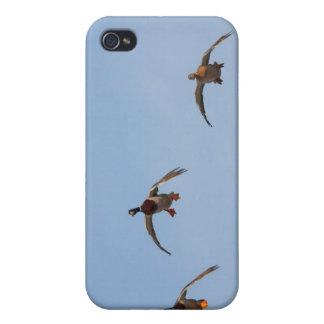 Ducks in Flight iPhone 4/4S Cover