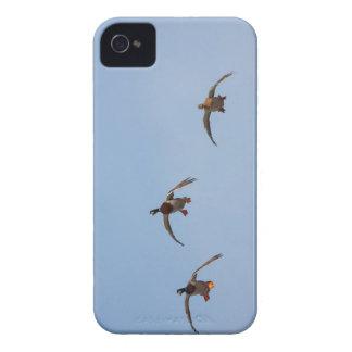 Ducks in Flight iPhone 4 Cases
