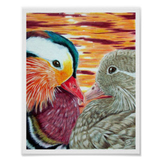 Ducks in Love Poster