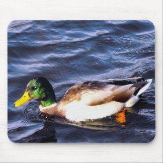 Ducks in the Wild Mouse Pad