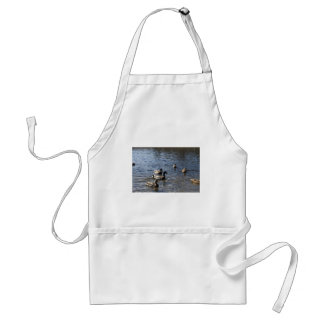 ducks in water, green timber park adult apron