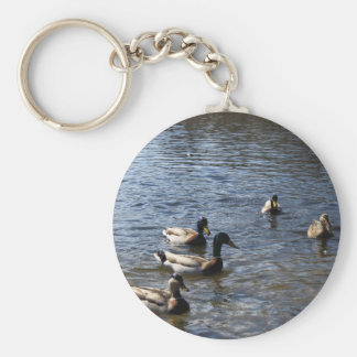 ducks in water, green timber park keychain