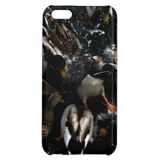 ducks in your IPhone iPhone 5C Case