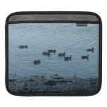 Ducks. iPad Sleeves