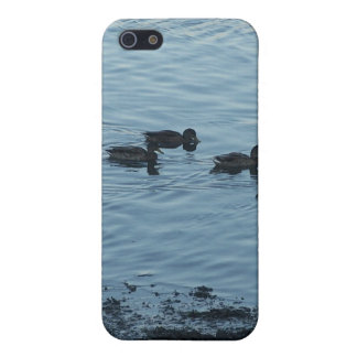 Ducks Cases For iPhone 5