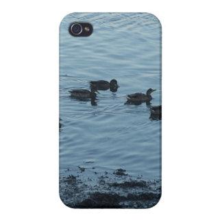 Ducks iPhone 4 Cases