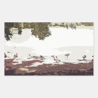 Ducks.jpg Pegatina Rectangular
