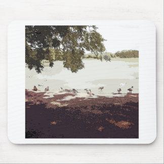 Ducks.jpg Alfombrilla De Ratón