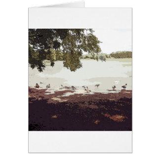 Ducks.jpg Tarjeta De Felicitación