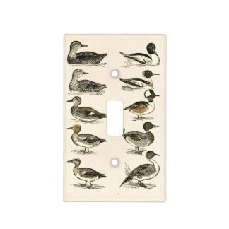 Ducks of North America Illustrations Light Switch Cover