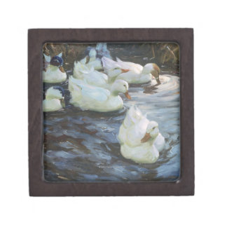 Ducks on a Pond Gift Box