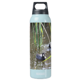 Ducks on a Pond Insulated Water Bottle