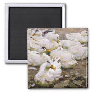 Ducks on a pond magnet