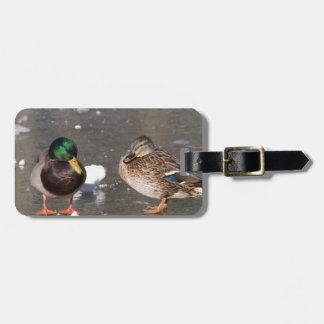 """ducks on black ice"" tag for luggage"