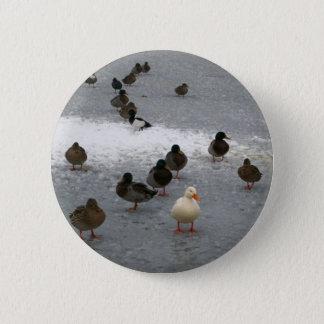 Ducks on Ice Button